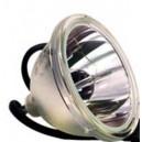 TOSHIBA D95-LMP Lampe de remplacement pour TV à Projection